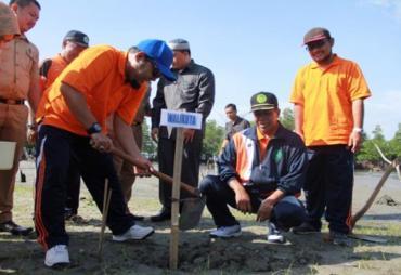 Mencegah Abrasi Pantai Melalui Restorasi Hutan Bakau dan…