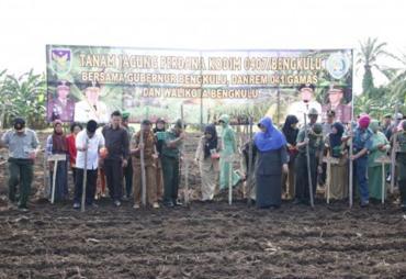 Sukseskan Produksi Jagung Nasional, Walikota Ikuti Gerkan…