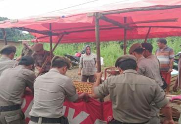 Satpol PP Tertibkan PKL Buah di Trotoar Danau Dendam