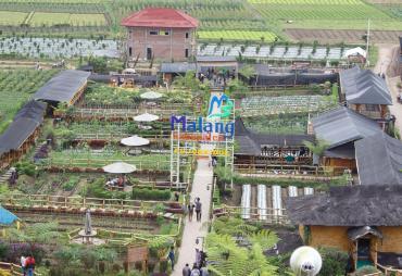 Didatangi Ribuan Pengunjung, Desa Pujon Kidul Disulap…