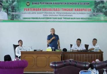 Pemkab BS Sosialisasi Replanting Kelapa Sawit