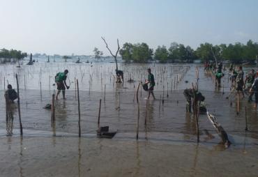 Jaga Ekosistem Biota Laut ,Aksi Tanam 500 Pohon di Pesisir…