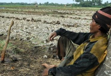Dinas Pertanian BS Imbau Petani Manfaatkan Asuransi Guna…