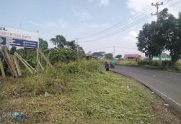 Dinas PUPR Kota Bengkulu Tebas Rumput Mulai Rimbun