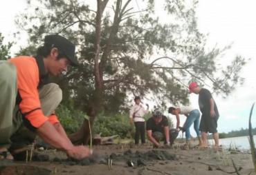 Cuaca Tak Mendukung, DKP Mukomuko Batal Tanam Mangrove
