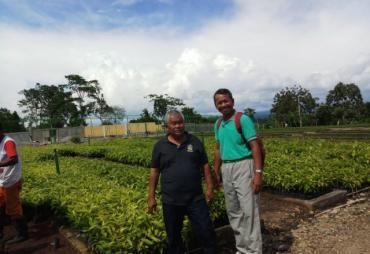 Bengkulu Selatan Terima Bantuan 10 Ribu Bibit Pohon dari…