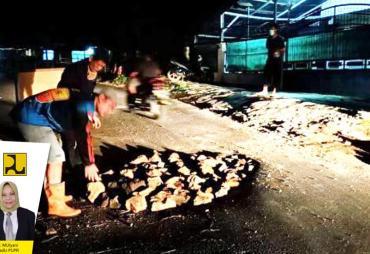 DPUPR Provinsi Bengkulu Cepat Tanggap Perbaiki Jalan Amblas…
