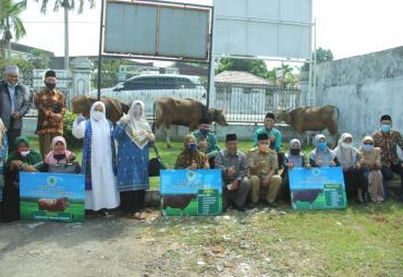 MUI Provinsi Bengkulu Terima Sapi Qurban dari Gubernur
