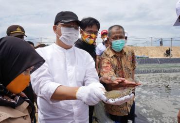Potensi Kemaritiman Bengkulu, Rohidin : Investasi Akan…